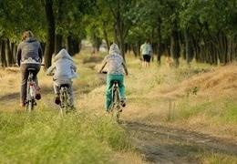 Podpowiadamy jak wybrać rower dla dziecka